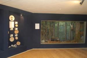 музей (3)
